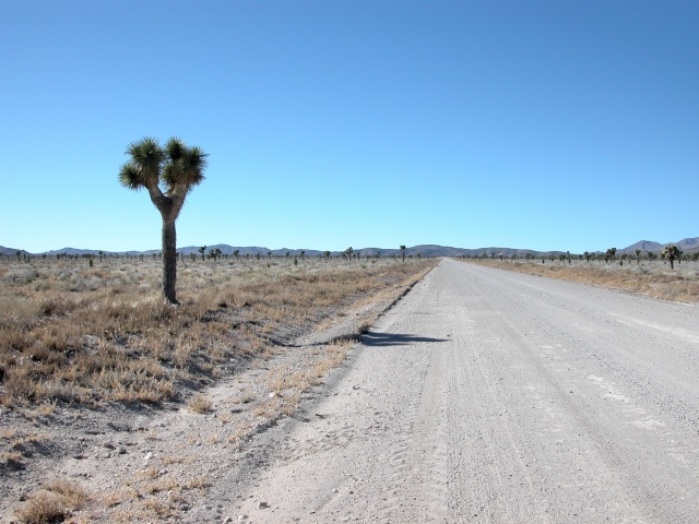 Road to Area 51, Nevada